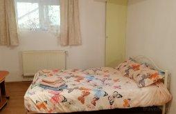 Accommodation Cluj-Napoca, Restart Apartment