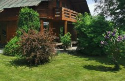 Accommodation Moldovenești, The Wooden House
