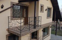 Accommodation Pătârlagele, 4 Anotimpuri Guesthouse