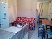 Accommodation Szigetbecse, Sárkány Lak Apartment