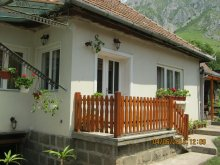 Accommodation Cornești (Mihai Viteazu), Anci Guesthouse
