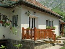 Casă de oaspeți România, Casa de oaspeți Anci