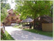 Accommodation Szigetbecse, Családi Guesthouse