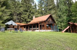 Accommodation Bucin Bogdan Ski Slope, Henrietta Guesthouse