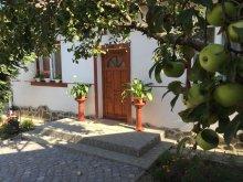 Kulcsosház Homoróddaróc (Drăușeni), Hintó Villa