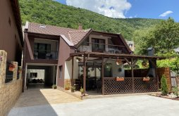 Guesthouse Caraș-Severin county, Adriana Guesthouse