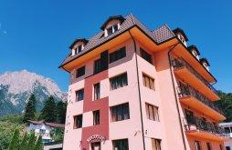 Szállás A bușteni Cantacuzino vár közelében, IRI Hotel