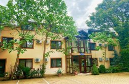 Accommodation Viile Satu Mare, Cardinal Hotel
