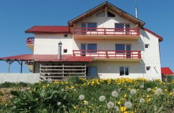 Bed & breakfast Râncăciov, Runcu Stone Guesthouse