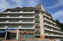 Hotel Vetrești-Herăstrău, Bradul Hotel