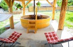 Cazare Dealu Ștefăniței cu Vouchere de vacanță, Pensiunea Bocrită