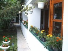 Guesthouse Gyula, Vali Guesthouse