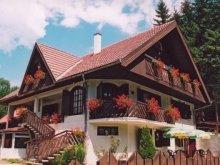 Accommodation Tulgheș, Muskátli Guesthouse