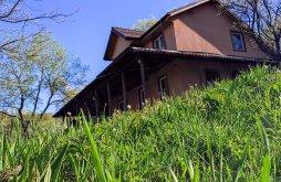 Villa Buzău county, Poiana Marului Guesthouse