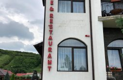 Apartman Dumitrești, Agroturisztikai Panzió