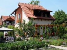 Accommodation Hunedoara county, Tichet de vacanță, Sub Cetate B&B