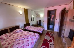Accommodation Corbu, Casa Cu Flori Guesthouse