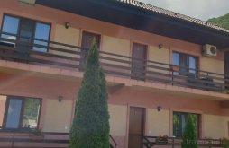 Vacation home Caraș-Severin county, Maria Vacation Home
