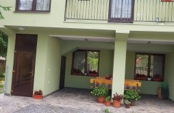 Apartman Radnai-havasok, Stetco Ileana Vendégház