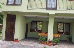 Vilă Anieș, Casa de oaspeți Stetco Ileana