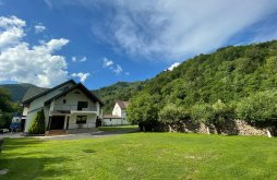 Accommodation Lotrioara, Lotrioara Guesthouse
