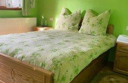 Accommodation Botiza, Ioana Mariana Guesthouse