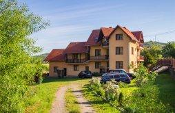 Accommodation Praid, Sóhegy Guesthouse