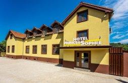 Hotel Fehéregyháza (Albești), PrincesSophie Hotel