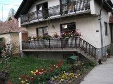Casă de vacanță Mány, Casa de vacanță Bazsó