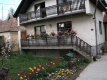 Nyaraló Balatonföldvár, Bazsó Ház