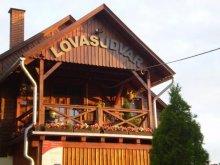 Guesthouse Tiszapalkonya, Martinek Lovasudvar és Ifjúsági Szállás B&B
