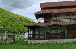 Villa Priboiu (Brănești), Roua Muntilor Villa