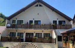 Panzió Rehó (Răhău), Casa Alexandra Panzió