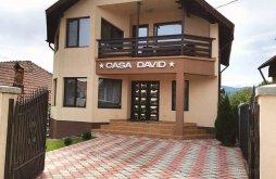 Accommodation Comarnic, David Vacation Home