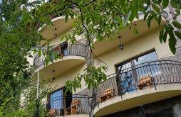Accommodation Teișani, Top Demac Guesthouse