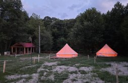 Camping near Porolissum, Apusenilor Camping