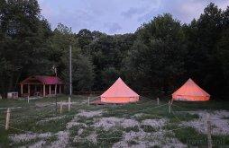 Camping near The church under the lake in Beliș-Fântânele, Apusenilor Camping