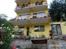 Accommodation Cuptoare (Cornea), Floriana Guesthouse
