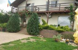Villa Püspökfürdő (Băile 1 Mai), Eco Panzió