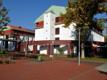 Accommodation Vokány, Dráva Hotel Thermal Resort