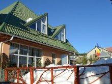 Apartment Pleșești, Condor Guesthouse
