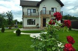 Szállás Părăușani, Nusa Panzió
