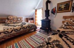 Accommodation Băile Borșa, Cãbãnuța din pãdure Chalet