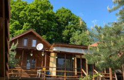Villa Jitia de Jos, Forest House