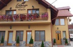 Accommodation Praid with Voucher de vacanță, Sóbanya Guesthouse