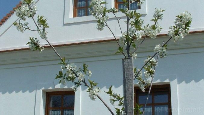 Casa de oaspeți Király Magyarpolány