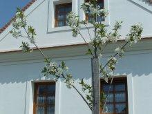 Cazare Pápa, Casa de oaspeți Király