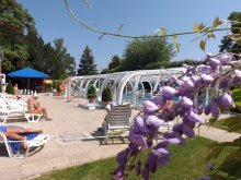 Szilveszteri csomag Magyarország, Hotel Aquamarin