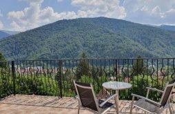 Accommodation Sinaia with Voucher de vacanță, TvCondor B&B