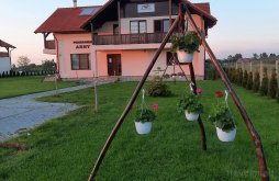 Bed & breakfast near Acâș Baths, Arny Guesthouse
